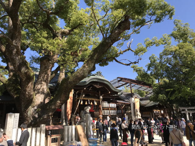 「石切劔箭神社」本殿とご神木