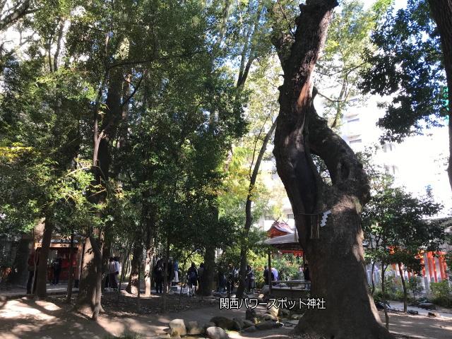 生田神社境内の史蹟「生田の森」の様子