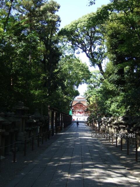 石清水八幡宮表参道。遠くに南総門が見える