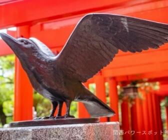 八咫烏(ヤタガラス)