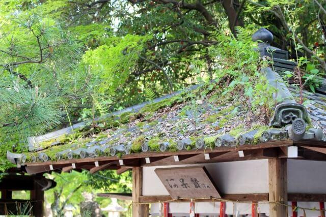 今宮神社の摂社「阿呆賢さん」